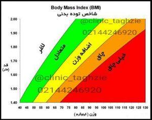 تعیین وضعیت اضافه وزن | دریافت رژیم لاغری
