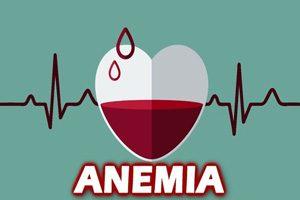 بهترین رژیم غذایی برای درمان کم خونی